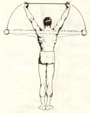 overhead-pulldown